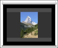 Scan-portrait format on a screen
