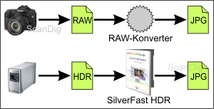 Comparison raw data elaboration digital camera - scanner